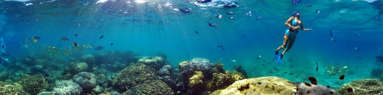 Noumea Resort l'Escapade Coral Reef
